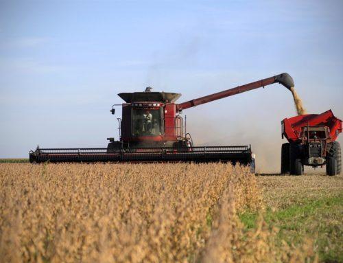 Por qué se eliminó el fondo de la soja para provincias y municipios