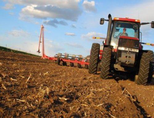 Uso del agua en maíz y en soja bajo estrés hídrico