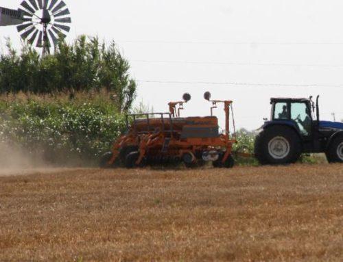 Una discrecionalidad que pone en riesgo la producción de soja