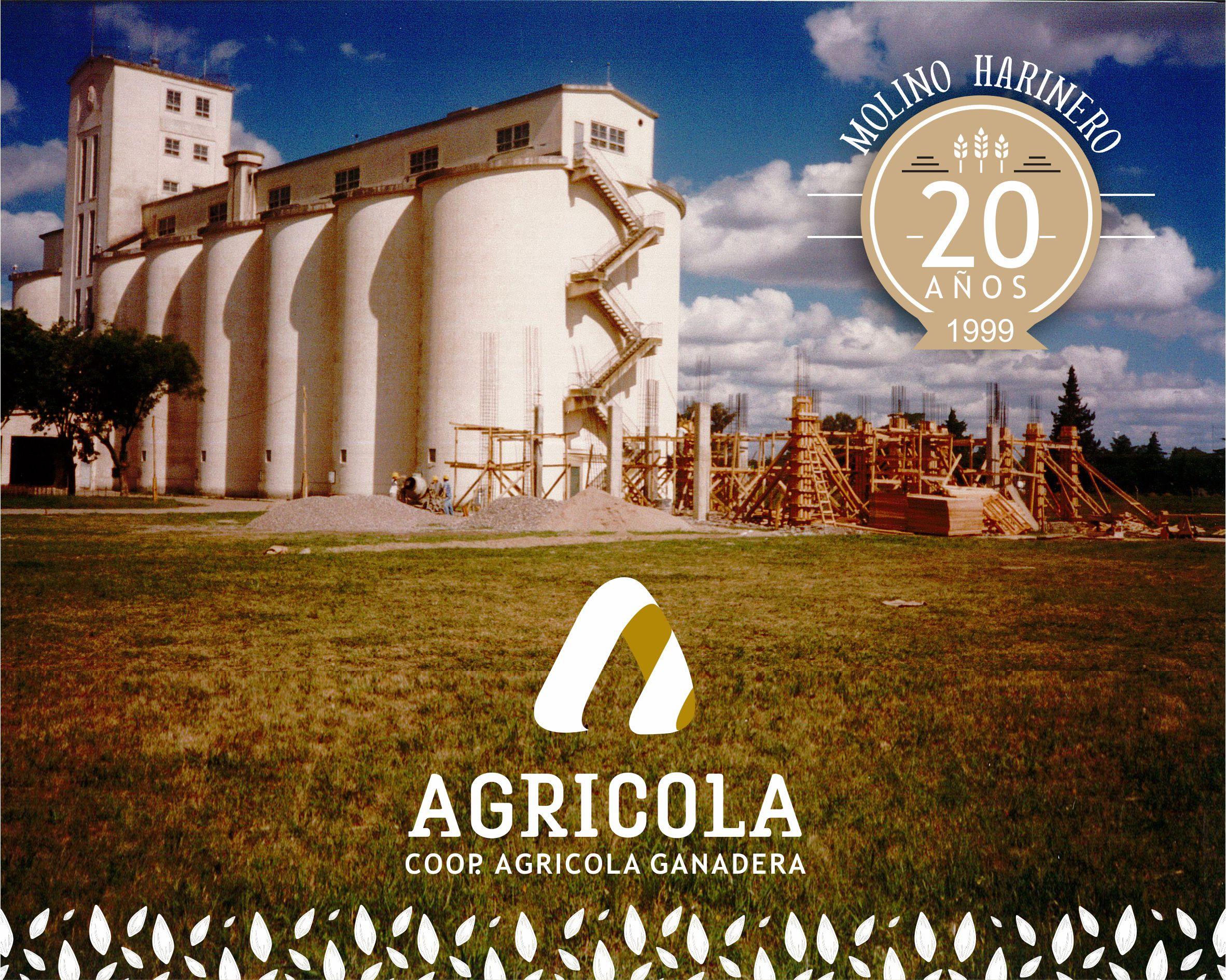 Molino Harinero «La Agrícola», su historia… 20 años (1999-2019)